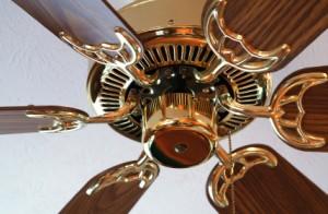 Ceiling fan tips