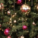 Christmas Tree for Blog