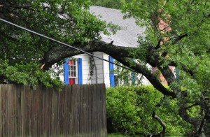 Electrical Safety: What You Should Do if Your Power Lines Come Down During a Thunderstorm